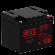 АКБ WBR EVX45-12NG
